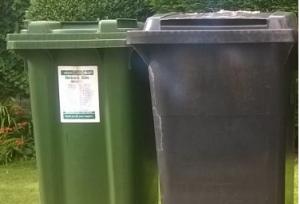 Domestic bin collection