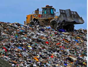 LANDFILL, WHAT DO WE REALLY KNOW ABOUT THEM?????