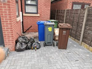 Domestic bin collection